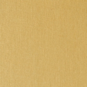 Canvas Light Brown