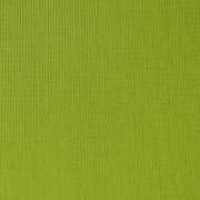 Canvas Olive