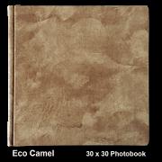 Eco Camel
