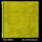 Eco Olive