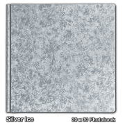 Silver Ice